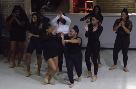 Delta Sigma Theta sorority raises awareness of Sickle Cell Anemia